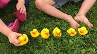 10th Annual Duck Pluck