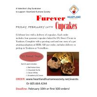 Valentine's Day Cupcake Orders Being Accepted