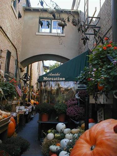 Little Market in Fall