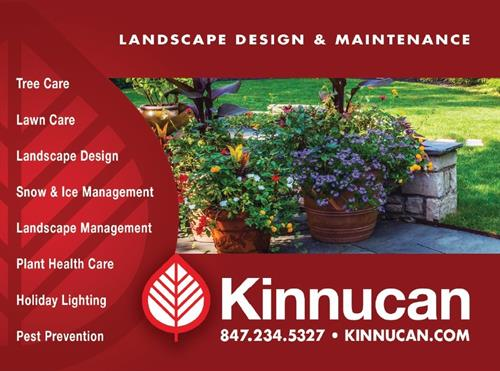 Landscape and Maintenance Service