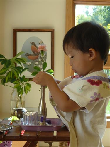 Toddler Classroom Flower Arranging