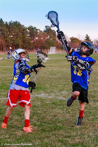 Lake Forest Lacrosse