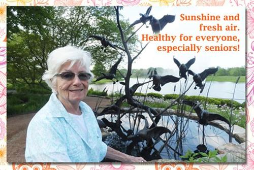 Gallery Image Seniors-Sunshine-Fresh-Air.jpg