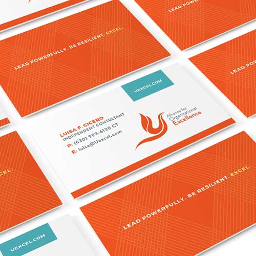 Branding for Alliance for Organizational Excellence