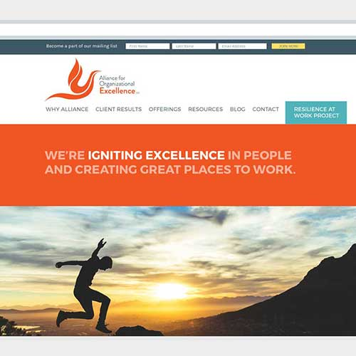 Website Design for Alliance for Organizational Excellence