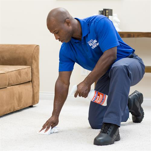 Sears Carpet Cleaning
