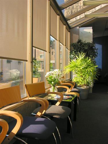 Motorized Solor Roller Shades