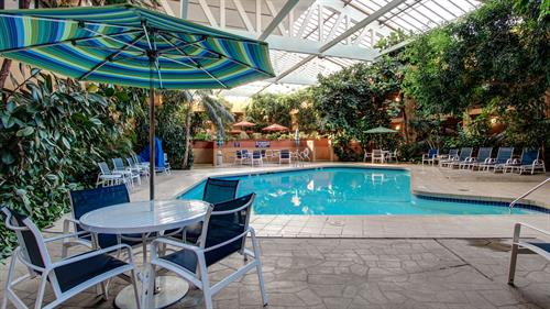 The indoor pool is surrounded by beautiful plats and trees. it's a wonderful tropical oasis.