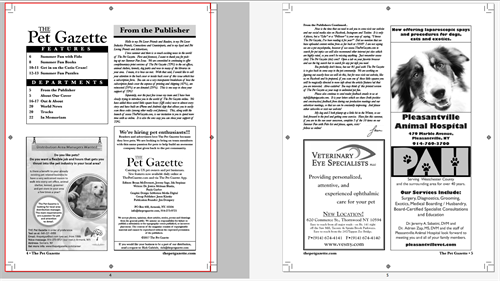 Newspaper/Magazine layout