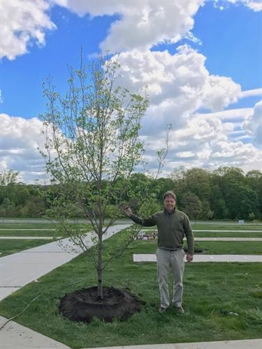Tree Donation & Dedication