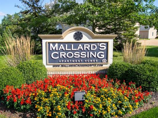 Mallard's Crossing