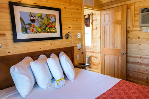 Comfortable Deluxe Cabins