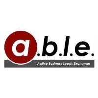 ABLE Lunch (March 24: Hosted by South Suburban Chamber)