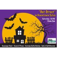 """Bat Street"" 2021 in Downtown Sylva"