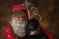 The Santa Chronicles Holiday Photo Sessions