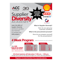 Supplier Diversity Academy 2021 - Session 1