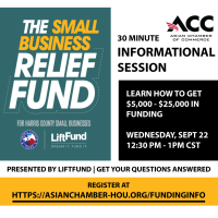 Harris County Small Business Relief Fund - Info Session