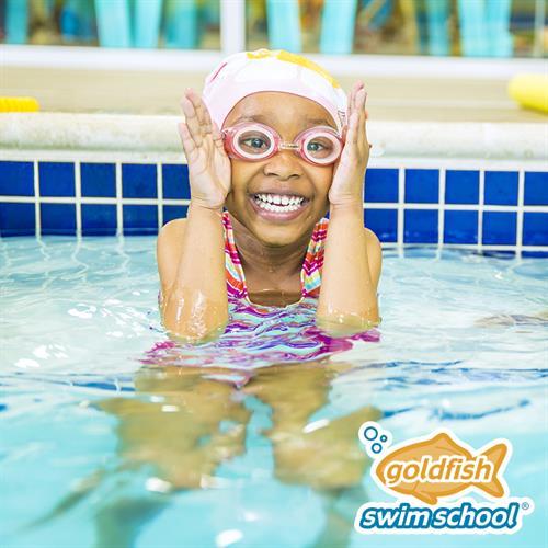 Goldfish Swim School Education K 12 Woodbury Area