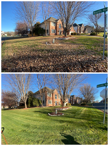 Before and After photos of a complete fall cleanup.