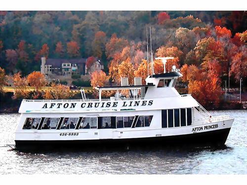 Afton Princess Charter Boat