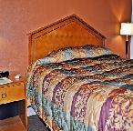 Gallery Image _King_Room_Bed-crop.JPG