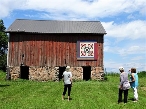 "Enjoying the view of the ""Swedish Apple Orchard"" Barn Quilt at the Andrew Peterson Farmstead"
