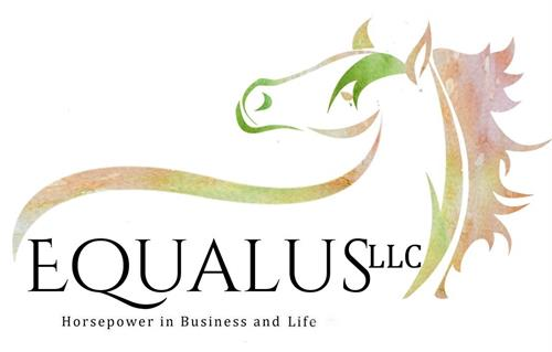 Original EQUALUS logo designed in Pakistan!