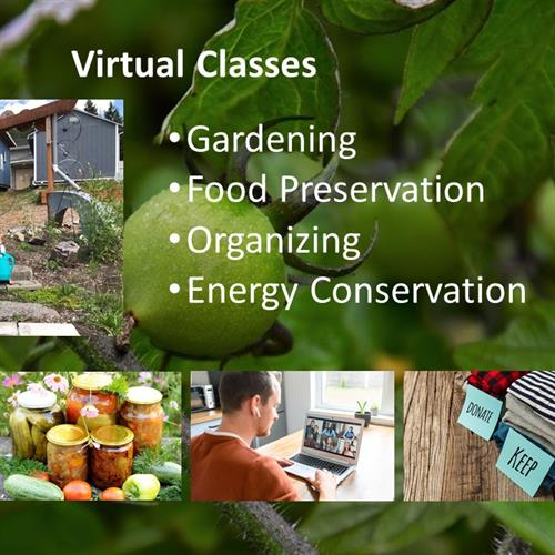 The South King Tool Library offers virtual classes on a variety of topics: gardening, decluttering, composting, recycling, canning and many other topics.