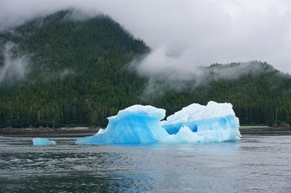 Icebergs in Tracy Arm, Alasak
