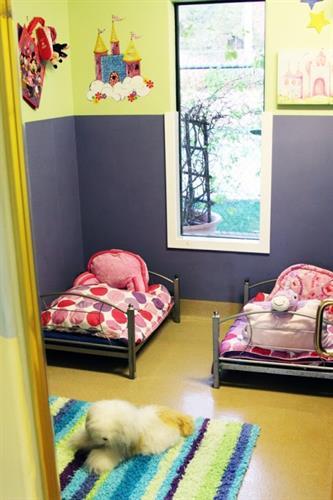 Gallery Image Petville-Suite_01.jpg