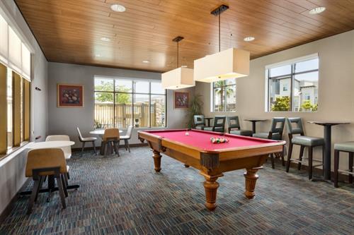 Enjoy our Billiard Room