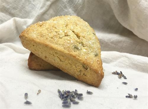 Lavender Honey Scone