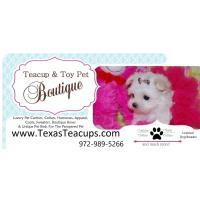 TEACUP & TOY PETS BOUTIQUE/ TEXAS TEACUPS