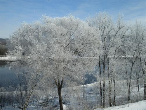 Gallery Image frost_view_2.JPG