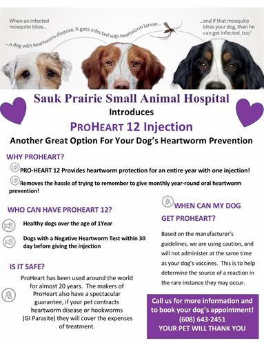 Gallery Image Proheart_12_Injection_Flyer_Google.jpg