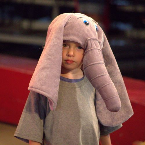 It appears that one of our Kids World Circus elephants is loose.