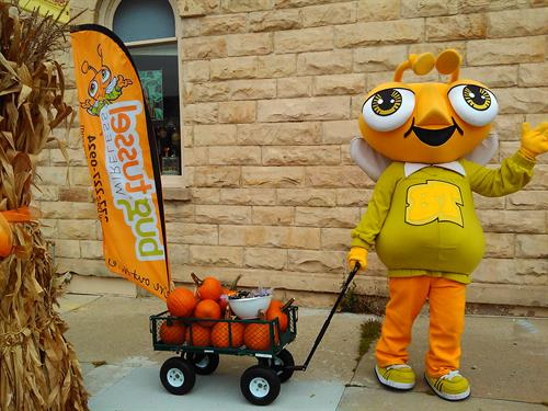 Meet Buford, our mascot at events around Sauk County