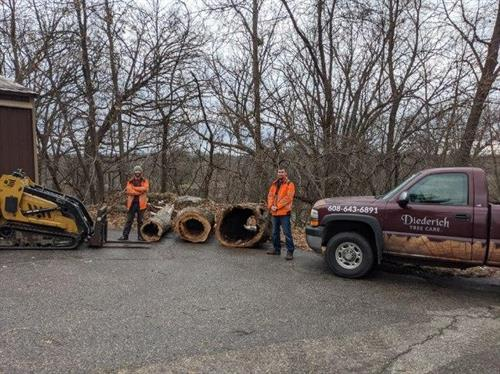 Donation of hollow logs to local zoo for animal shelter