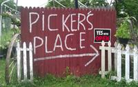 Picker's Place