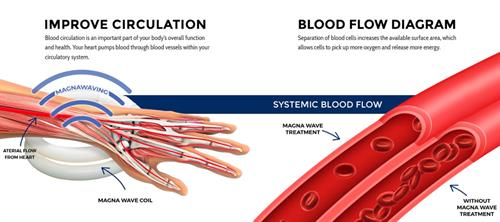 Gallery Image magna-wave-blood-flow-diagram.jpg