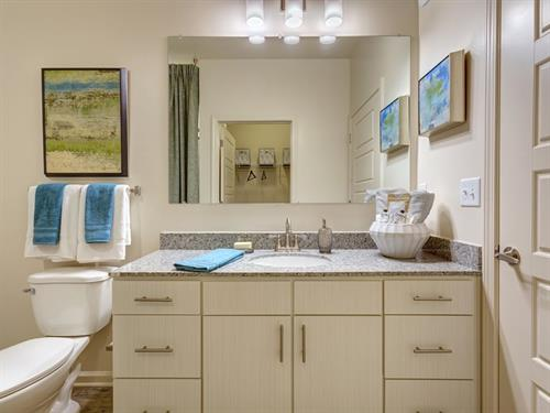 Tapestry Park Polaris Bathroom Finishes