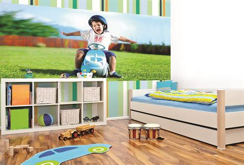 Custom Digitally Printed Wall Graphics and Murals