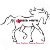 NEER North Holiday Open HOuse