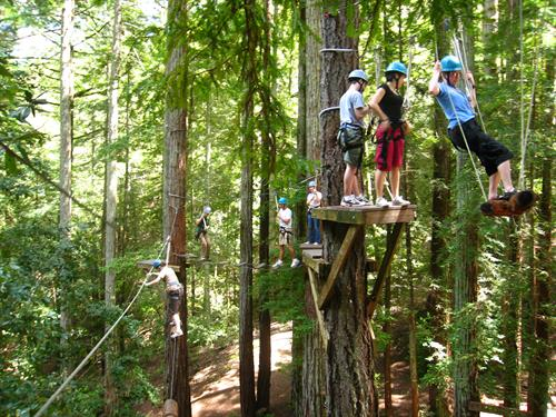 On-Site Team Building Ropes Course and Aerial Park at Alnoba