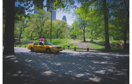 Taxis and Transportation