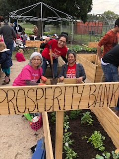 Lola Castro, President, along with Nora Garcia (left) CSR/Bank Officer and Bethia Longoria (right) CSR/Bank Officer, planted our first set of herbs & leaf lettuce for our Community Garden project in the Fall Nov 2018 spearheaded by Dr. Dhavel Patel, his lovely wife Patricia and son at their business The Coffee Barrel to help promote fresh produce & good health for our citizens.