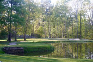 Gallery Image CCCGolfcourseGallery3-300x200.jpg