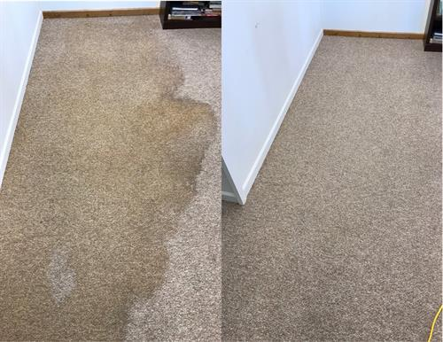 Large Stain Removed