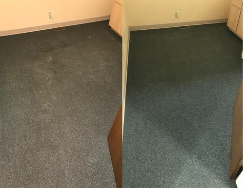 Carpets Cleaned