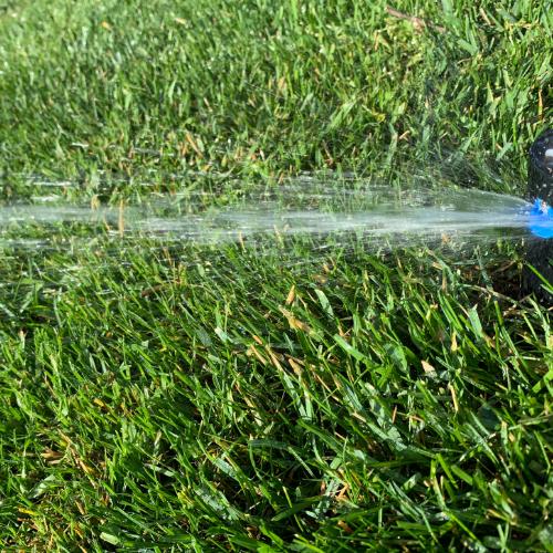Gallery Image irrigation1.jpg